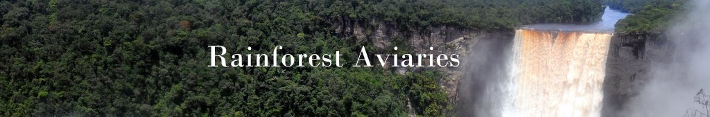 Rainforest Aviaries Title Bar